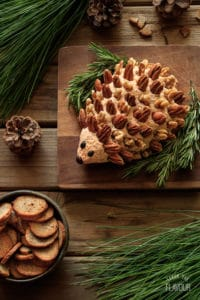 Woodland Hedgehog Cheese Ball: this adorable onion-flavored cheese ball is sure to thrill your guests anytime of year. | www.savortheflavour.com
