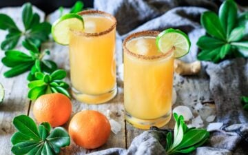 two glasses of ginger beer mocktail with lime