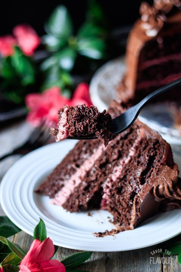 holding a forkful of sour cream chocolate cake
