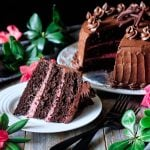 slice of sour cream chocolate cake with forks