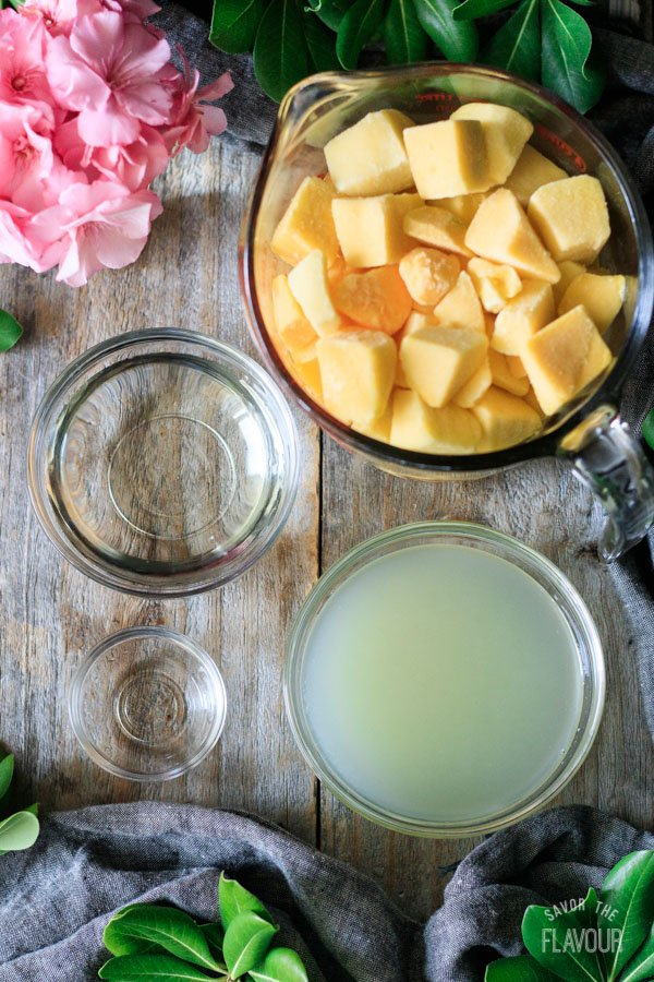 ingredients for frozen mango daiquiri