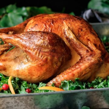 side view of a roasted turkey on a tray