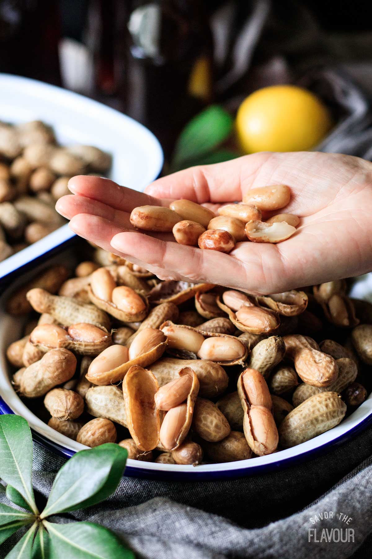 person holding a handful of shelled boiled peanuts