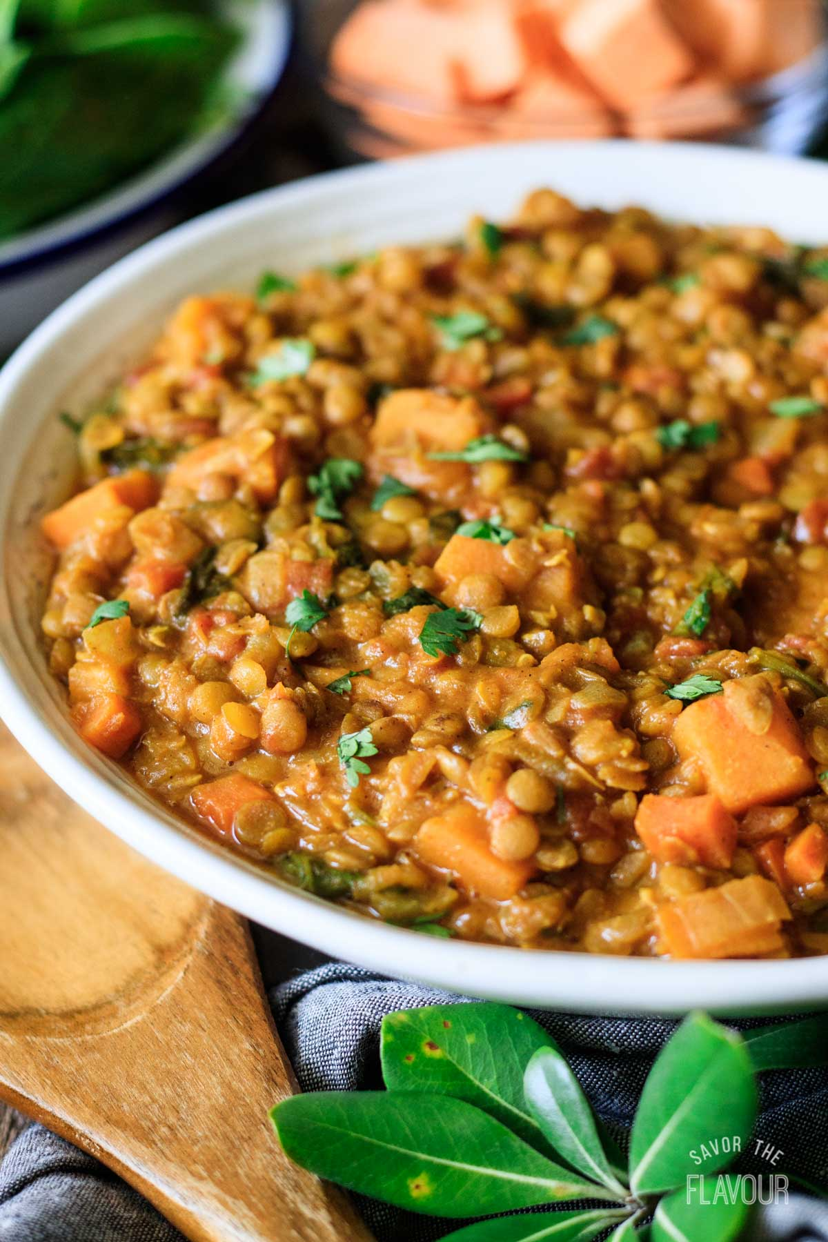 closeup of a bowl of Moroccan lentil stew