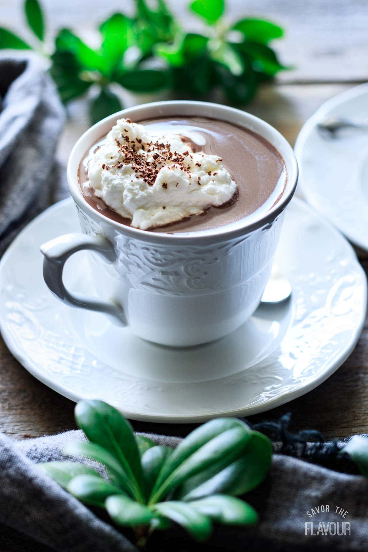 cup of French hot chocolate