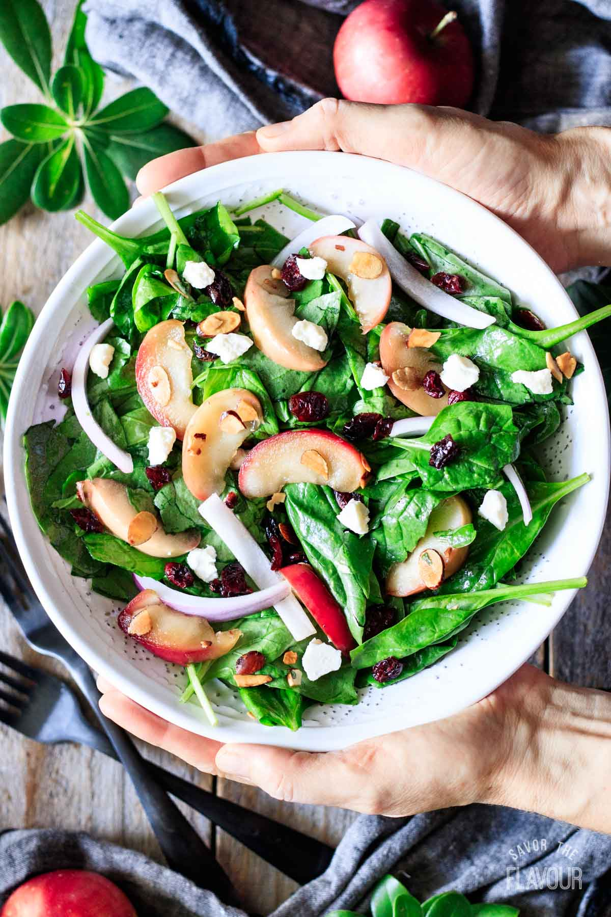 person holding a bowl of spinach apple salad