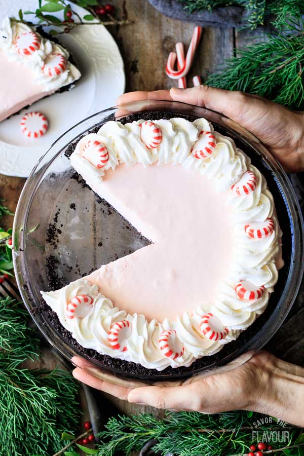 person holding a peppermint pie