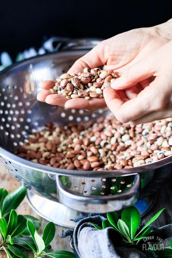 sorting through dried beans