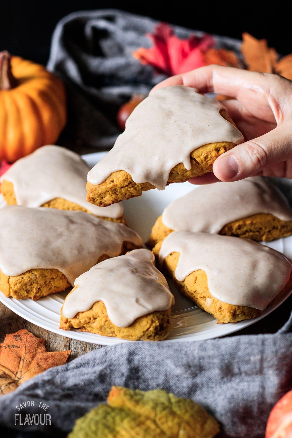 person holding a vegan pumpkin scone