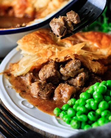 person holding a forkful of beef chunks from Scottish steak pie