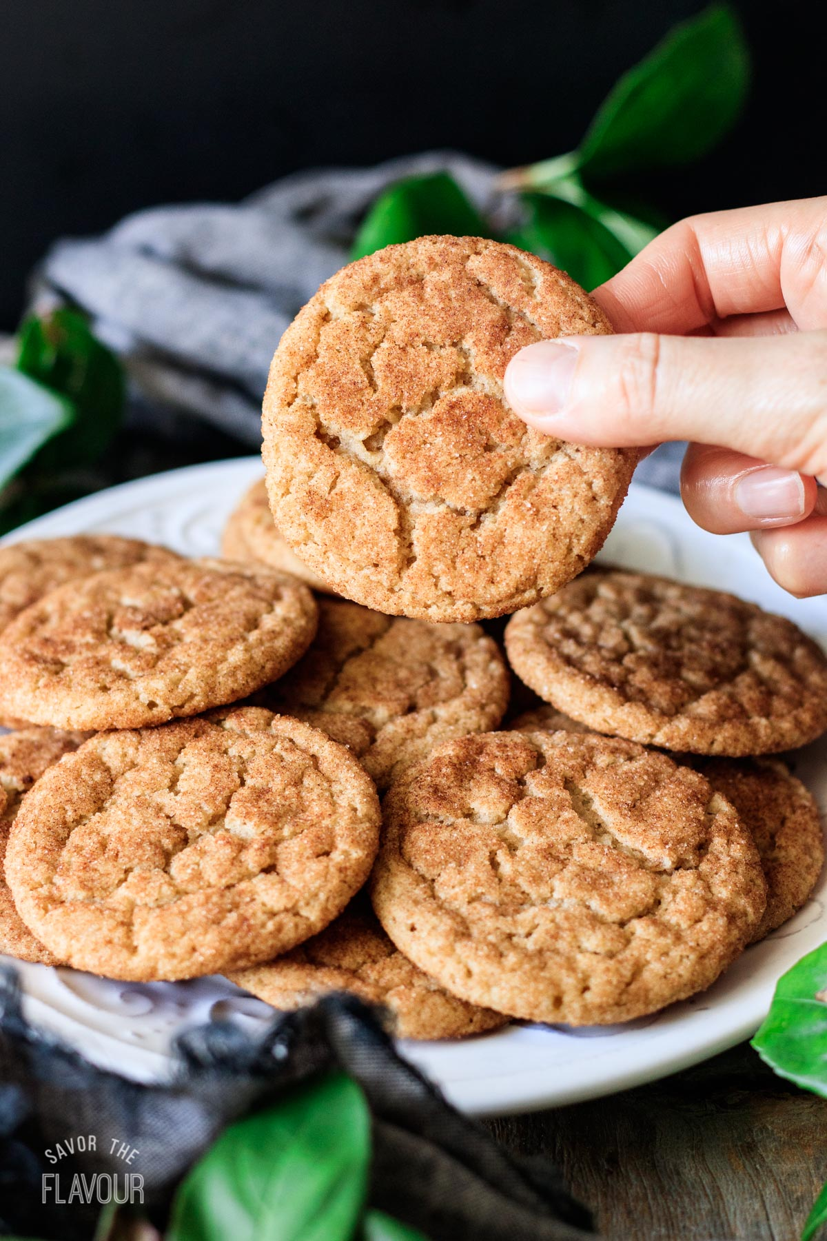 person holding a vegan snickerdoodle