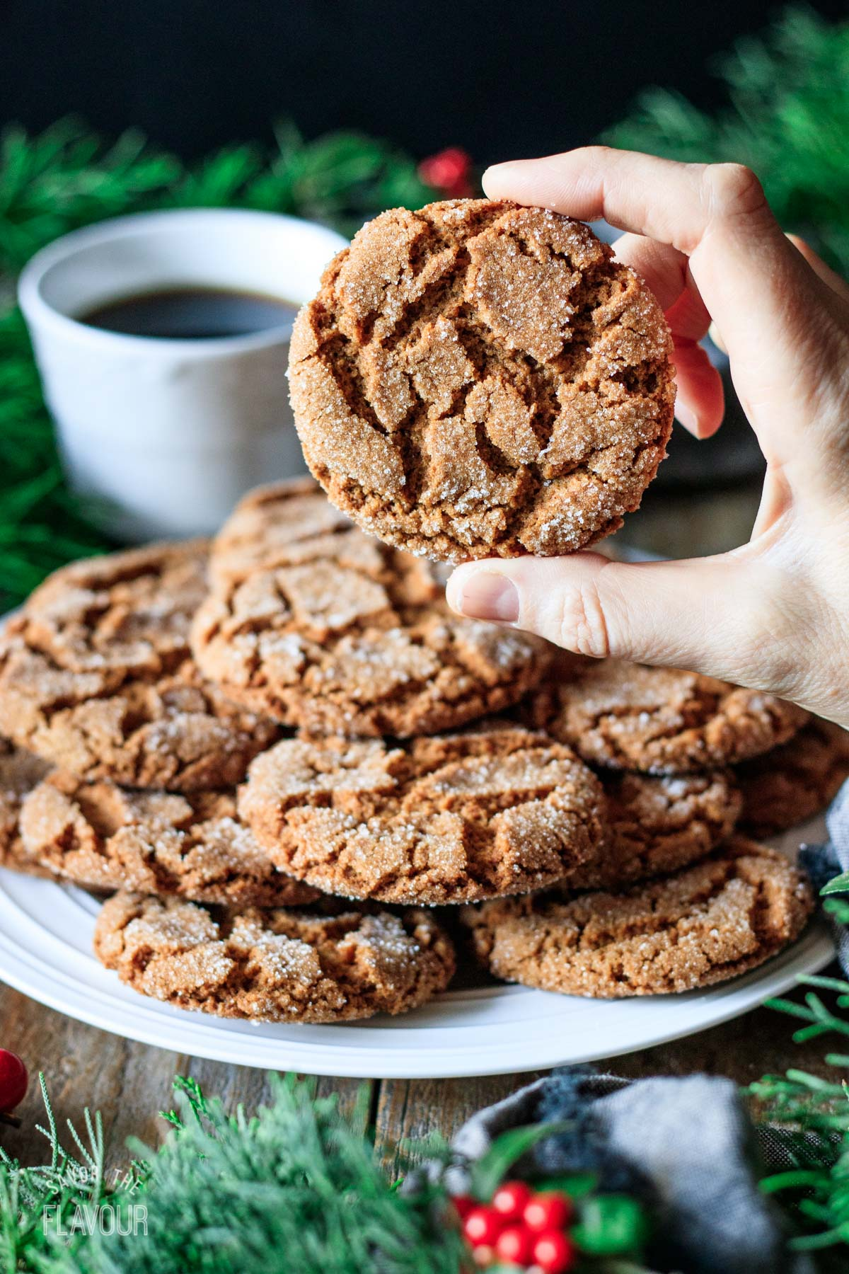person holding a vegan gingersnap