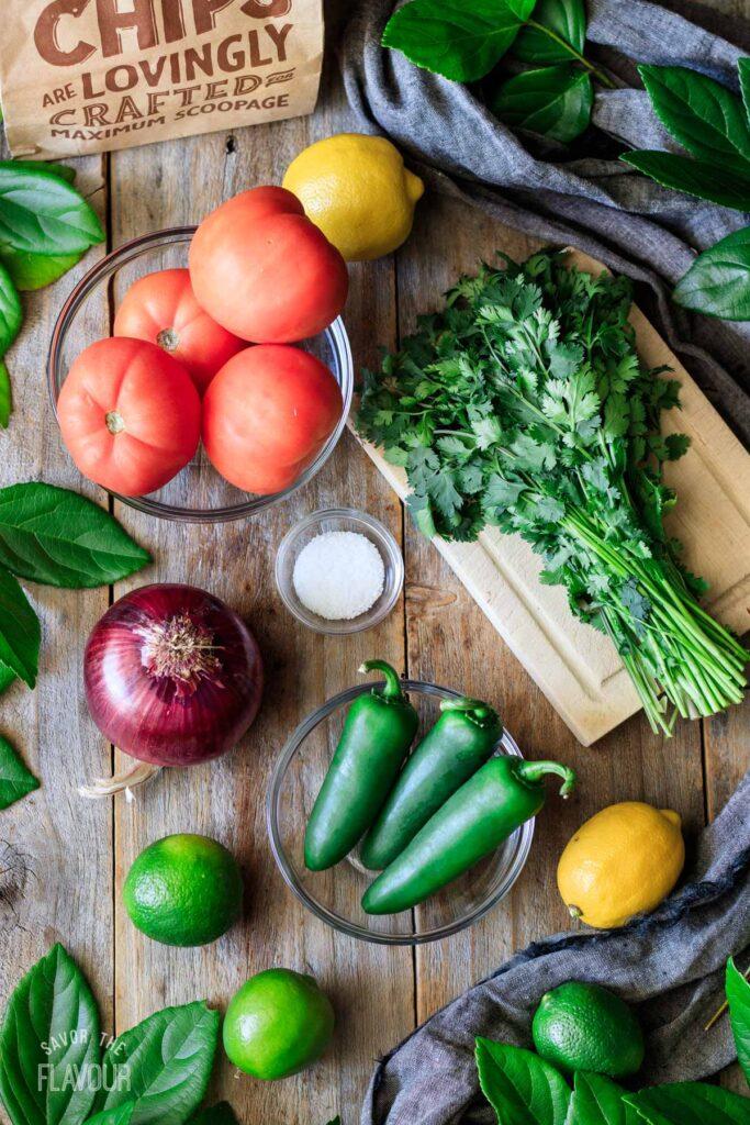 tomatoes, onion, jalapeños, cilantro, limes, lemons, and salt for tomato salsa