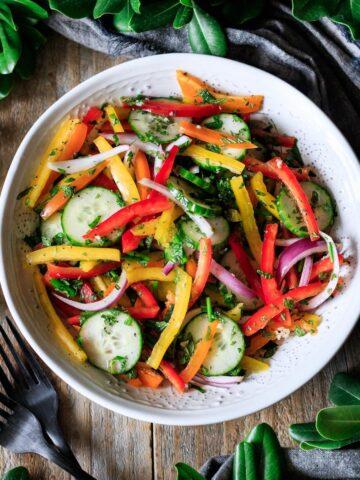 white bowl of bell pepper salad